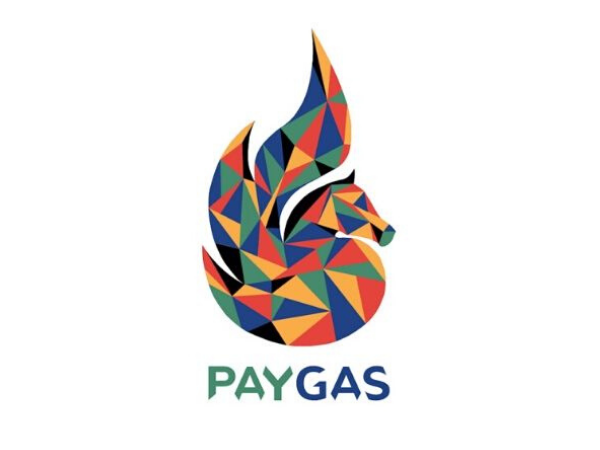 PayGas, South African energy startup, teams up with Afroxto install 52 Pay-as-you-gas stations in SA