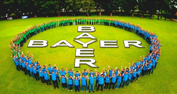 African startups can apply for support from Bayer Foundation