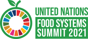 African Startups can apply for UN Food Systems Summit 2021