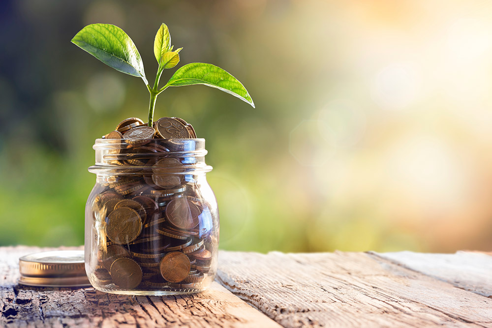 Ecosystem Integrity Fund Targets African Cleantech Startups with New $250 Million Fund